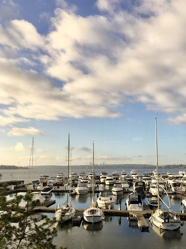 365the2019edition 3652019 day328365 24nov19 project365 boats sky clouds marina lakewashington water