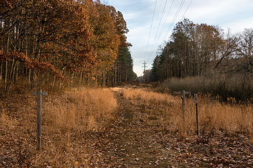 kalamazoo kalamazoocounty lillianandersonarboretum michigan unitedstates fall landscape outdoor park explored