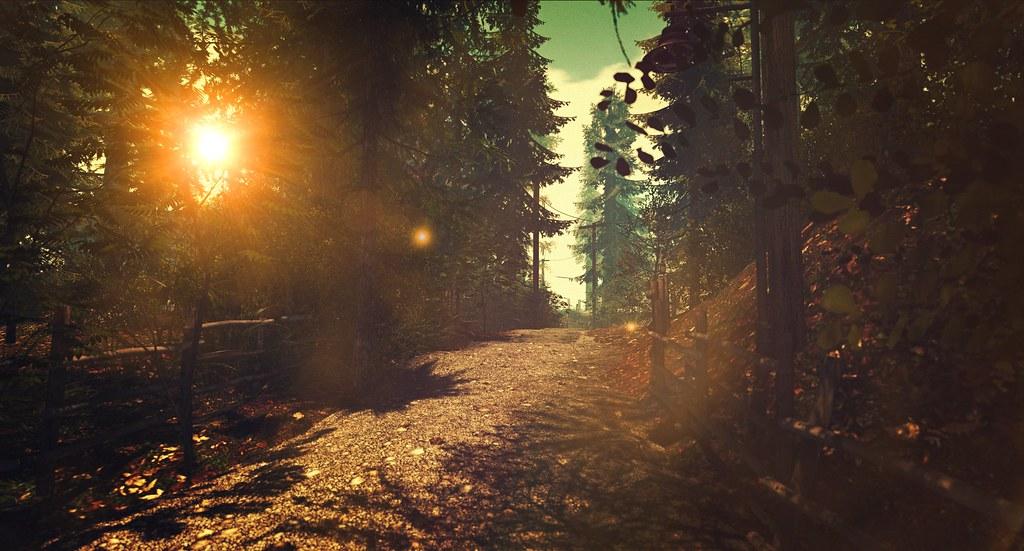 A Forgotten Path