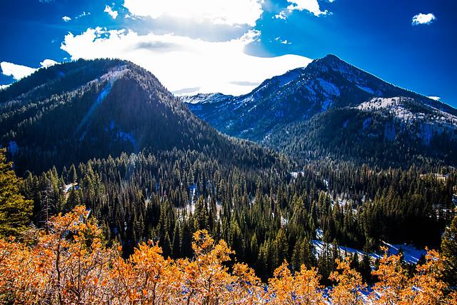 Big Cottonwood Canyon IMG_3779