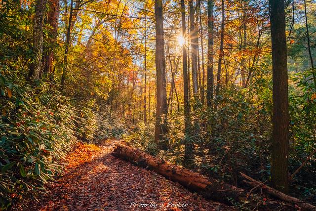 Turtletown Creek Trail
