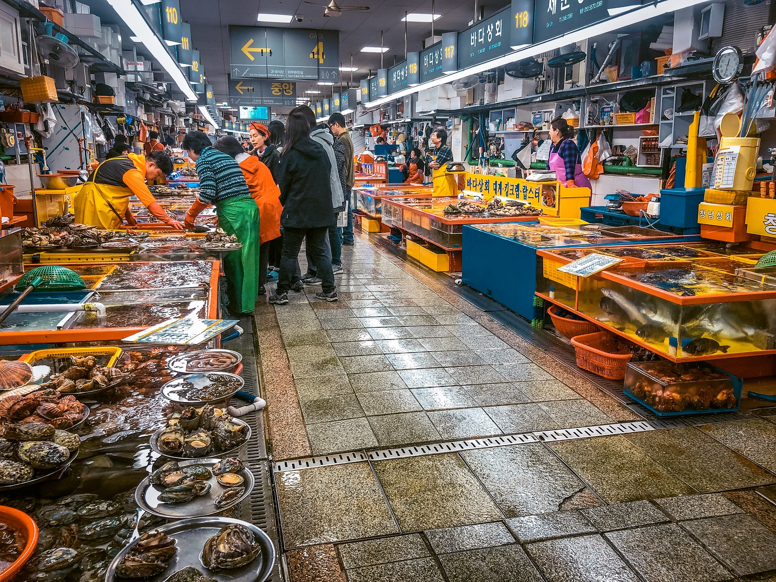 Jagalchi Market | Things to do in Busan