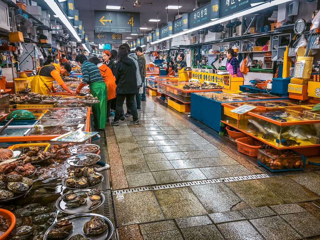 Jagalchi Market | 2 Days in Busan Itinerary