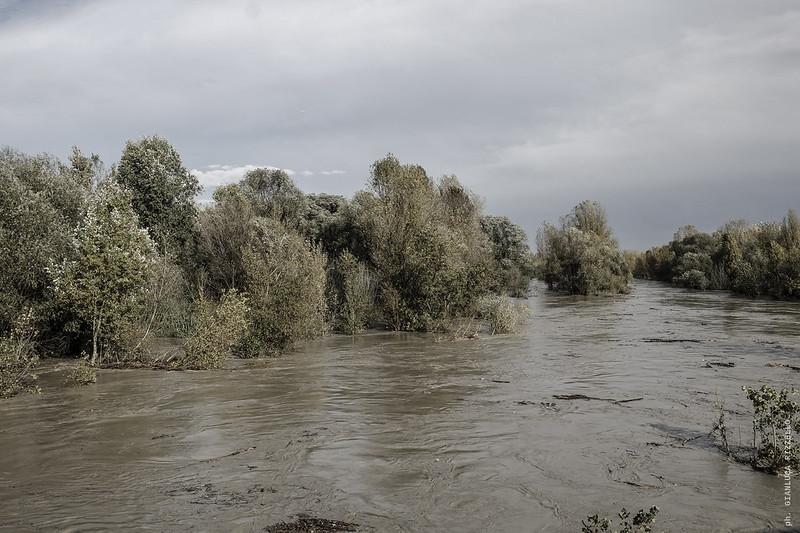 Piena fiume Reno