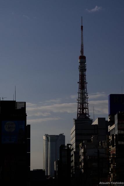 Nikon Z50 Shooting in Tokyo
