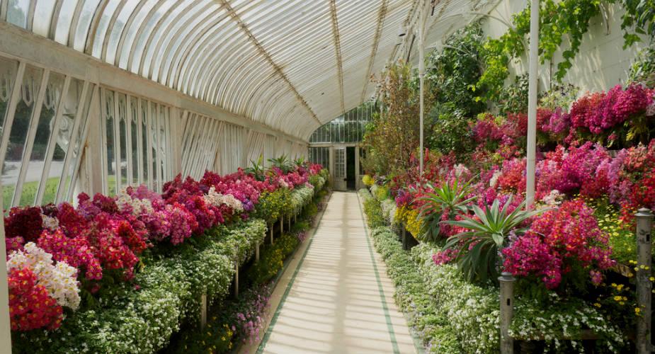 Belfast Botanic Gardens | Mooistestedentrips.nl