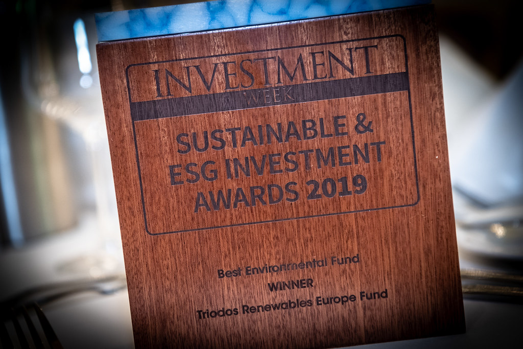 Sustainable & ESG Investment Awards 2019
