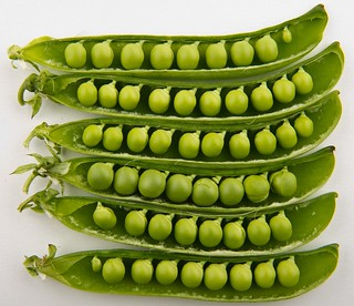 Peas_in_pods_-_Studio copy