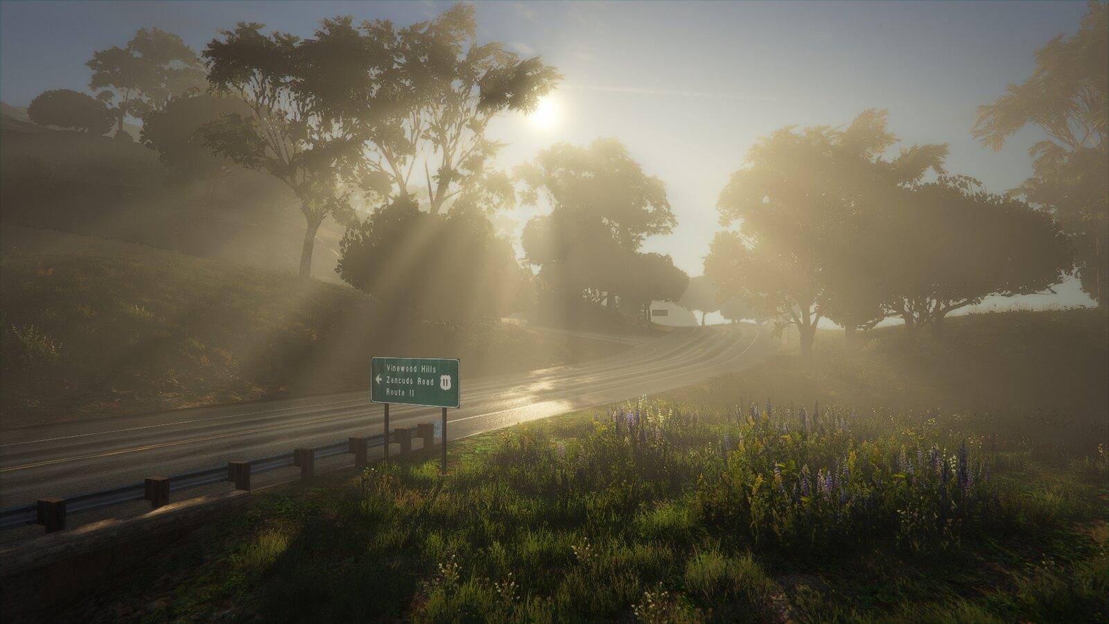 Country Fog | GTAV