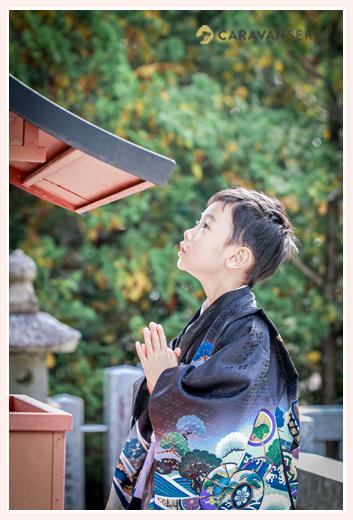 七五三 神社で神さまに向かって手を合わせる男の子