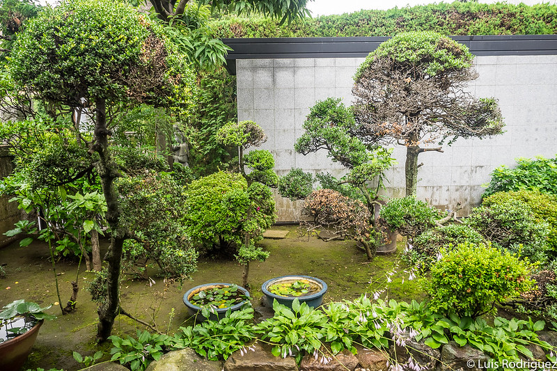 Jardines del templo Korin-in