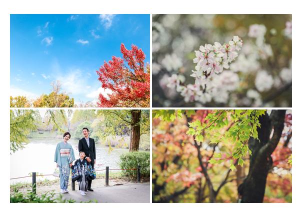 紅葉の時期(秋)の杁ヶ池公園 愛知県長久手市