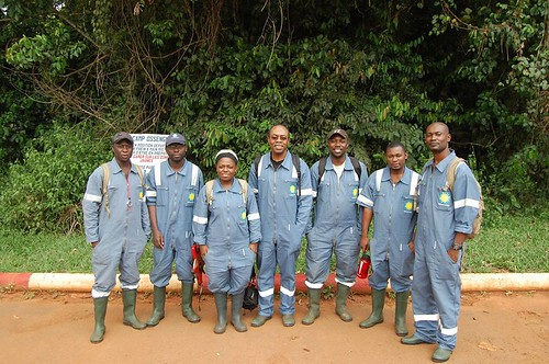Mon, 11/25/2019 - 11:28 - Part of the field crew for Rabi's second census:   (left to right): Dimitri Mibamba, Brave Nzamba, Pulcherie Bissiengou, David Kenfack, Diosdado Nguema, Daniel Nguema Ndemezo'o, & Landry Tchignoumba