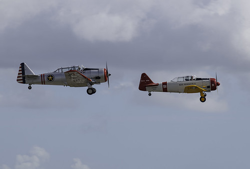 Army and Navy Variants of the T-6