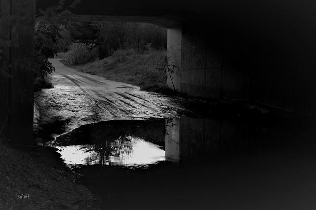Sous les ponts - Under the Bridge