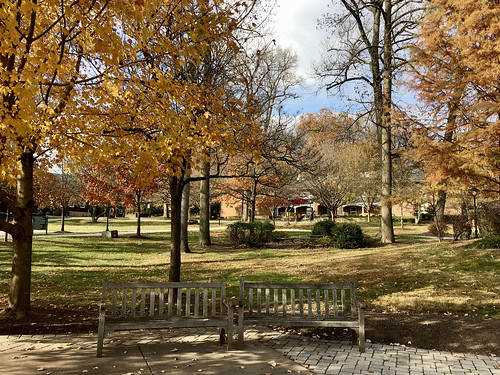 garrisonforest owingsmills maryland schools campus buildings trees fallcolors shadows benches iphone hbm htmt