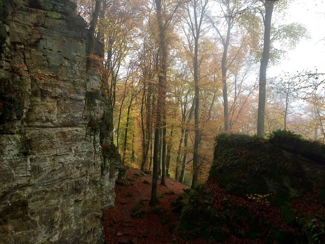 Herbst in der Felsenland-Südeifel