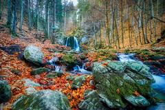 Water Falling At Josefstal
