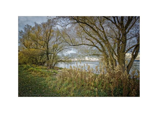 November Light at the Lake
