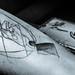 Elefante Blanco Tattoo Studio By: Obed Salazar