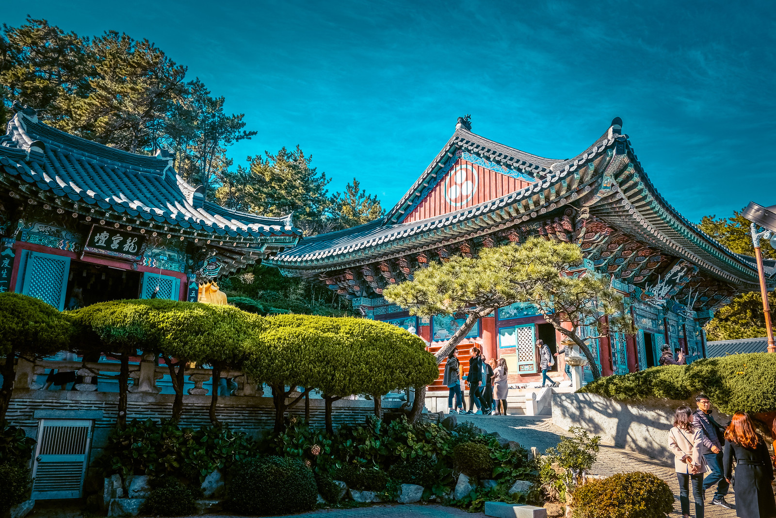 Haedong Yonggungsa Temple | Things to do in Busan