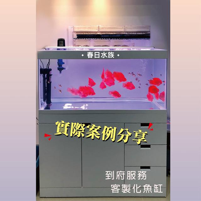 2019018