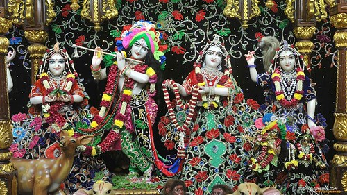 ISKCON Chowpatty Deity Darshan 26 Nov 2019