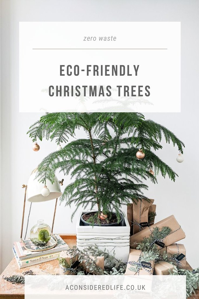 An Eco-Friendly Christmas Tree