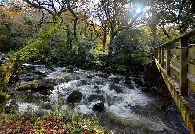 The River Plym near Shaugh Prior, Dartmoor (Explored)