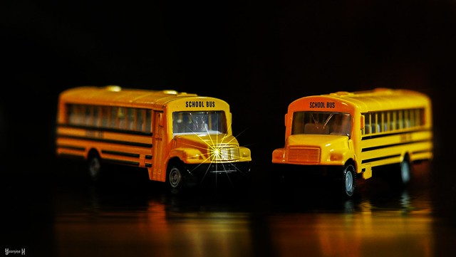 School Bus - 7764