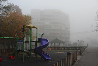 Color in foggy Craiova | by Timon91