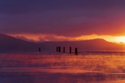 cowichanvalley cowichan cowichanestuary duncan duncanbc vancouverisland bc britishcolumbia canada landscape landscapephotography dawn sunrise goldenhour seascape serenity sony sonya7r3 sony70200mmgm x2teleconverter cowichanbay fog mist