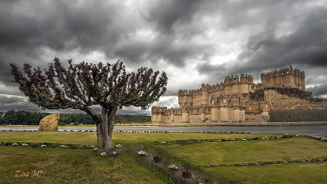 El árbol y el castillo