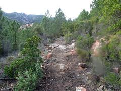 Chemin de Luviu restauré par Denis : le chemin au départ de sa montée