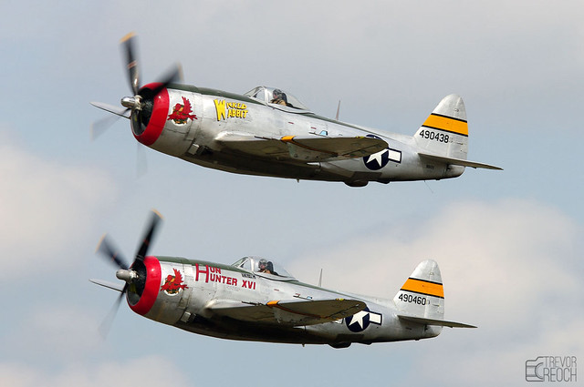 Stunning pair of Thunderbolts P-47