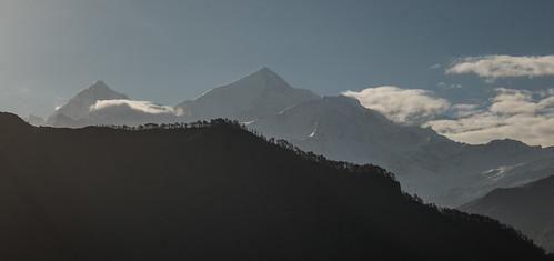 Kauri Pass-19.jpg