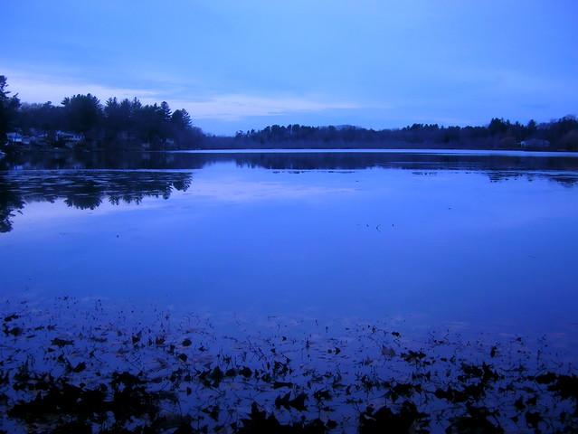 Blue November Evening