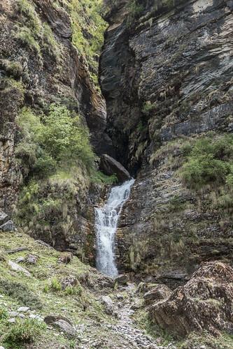 Kauri Pass-23.jpg