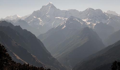 Kauri Pass-41.jpg