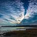 Chaffinch Bay