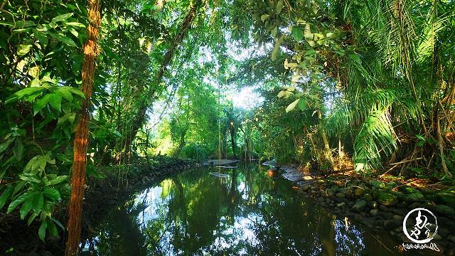 リゾートに流れる川
