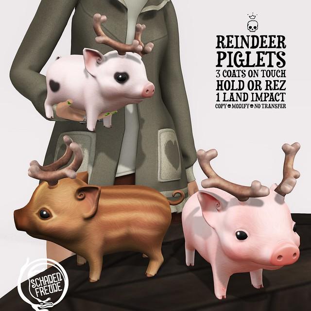 reindeer piglets