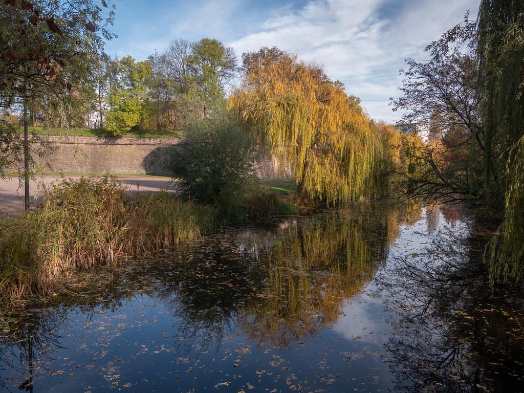 Un pont sur l'automne...+ nouvel ajout. 49131000316_9dfa6647ce_b