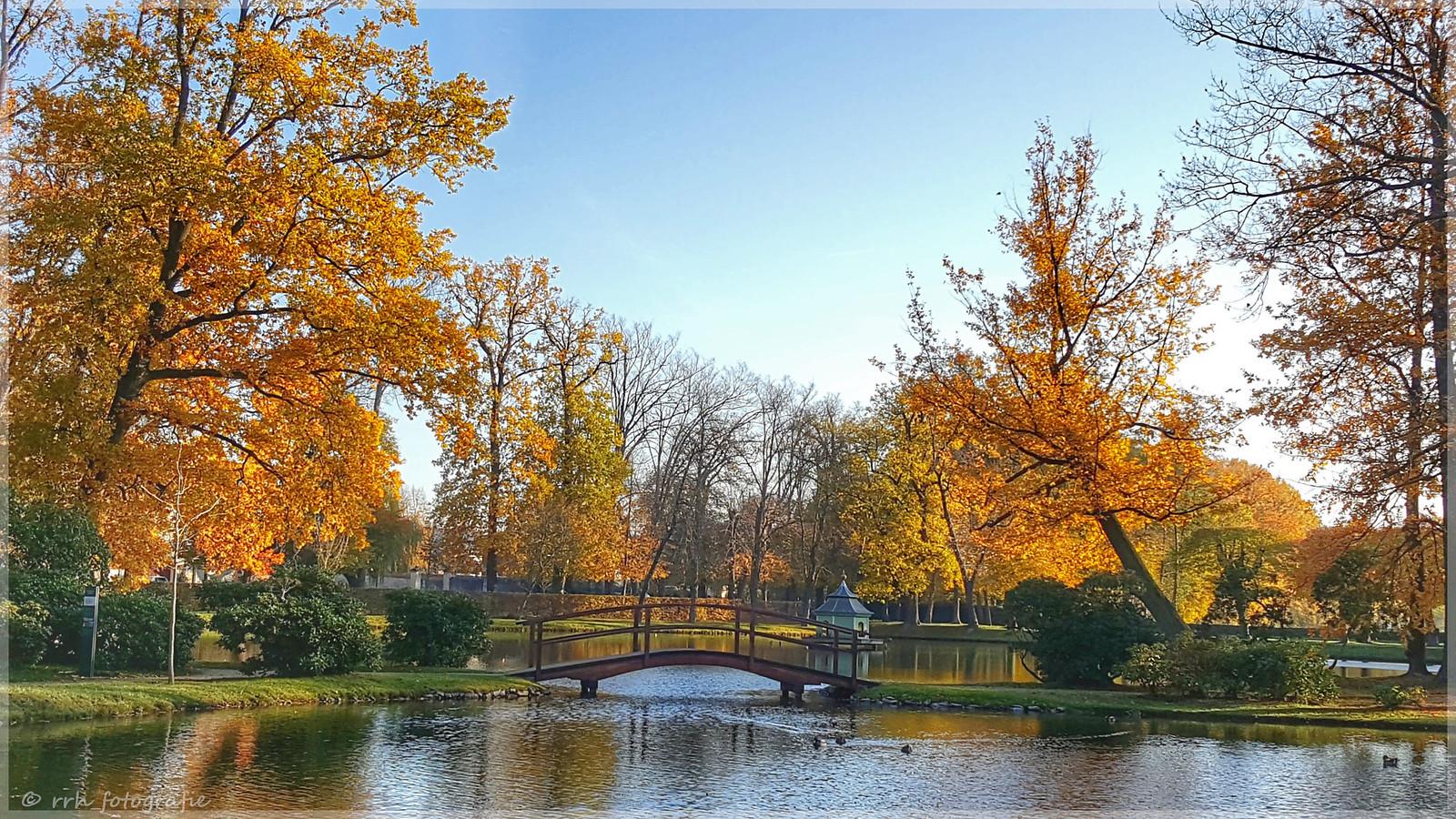 Herbst in Zabeltitz