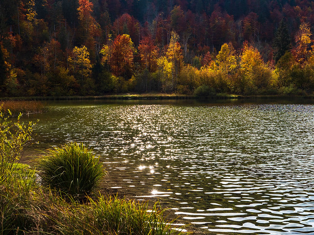 Sparkling Autumn Lake