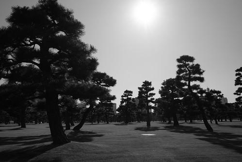 tokyo monochrome 62