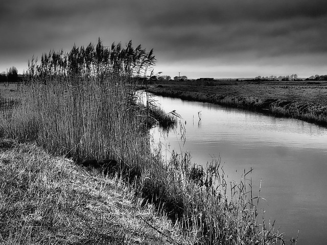 Marshland, Fairfield, Romney Marsh 3