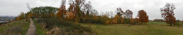 Autumn ... (N4417)