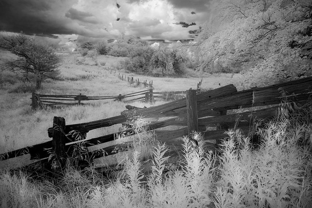 Airport Road_infrared fence