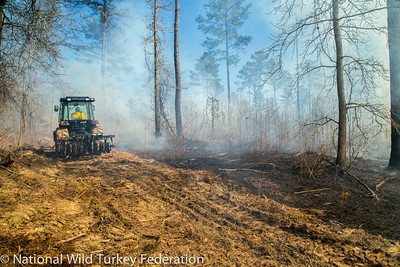 The National Wild Turkey Federation conducts habitat improvement projects through stewardship contracts.